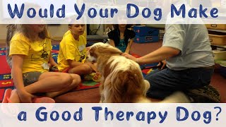 What Makes a Good Therapy Dog | Therapy Dog Training and Tips