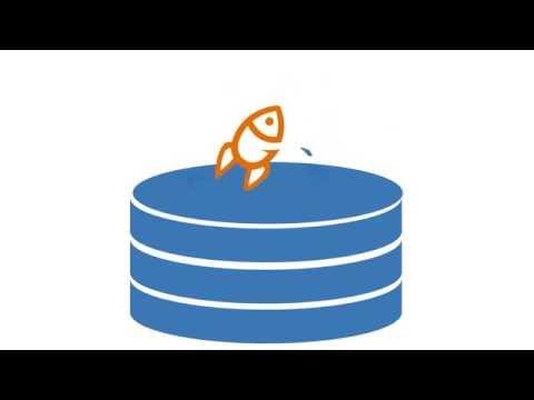 Hyperfish - So funktioniert die Software