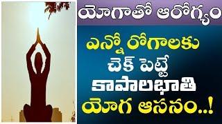 kapalbhati pranayama benefits in telugu - Thủ thuật máy tính