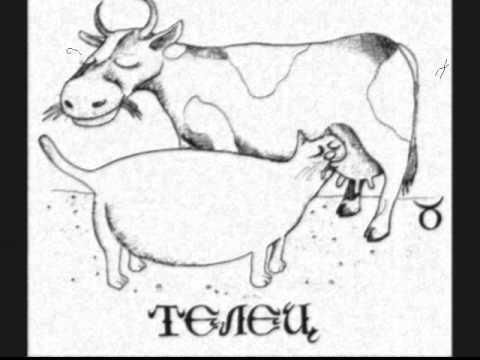 Гороскоп для близнецов на год козы