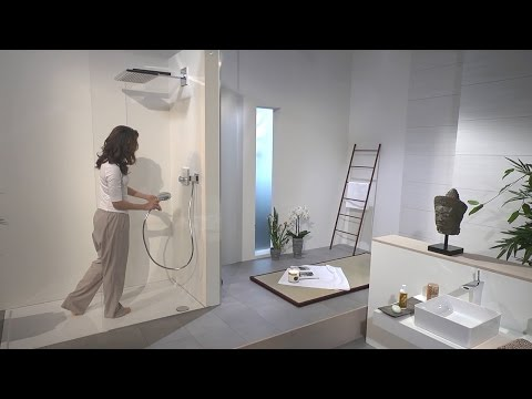 Hansgrohe Rainmaker Select 460 1jet overhead shower #24003400