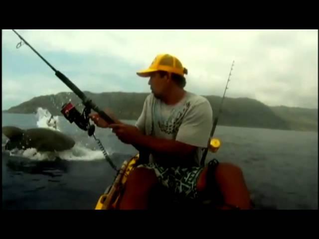 Kayak fisherman has close encounter with shark