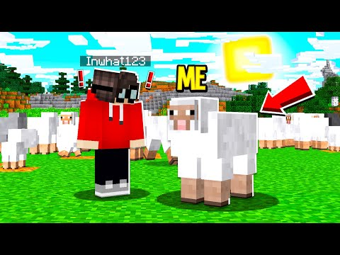 I Used A DISGUISE MOD To CHEAT In Hide And Seek! (Minecraft)
