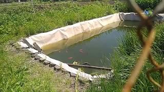 Как сделать для рыбалки пруд