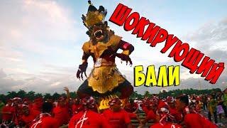 Топ-33 интересных фактов о Бали