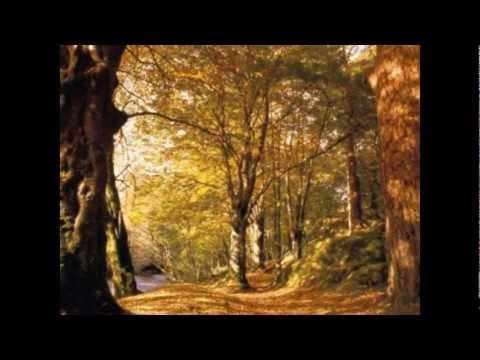 Ricardo Montaner- Dejame llorar
