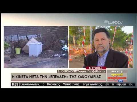 Ο υφυπουργός Περιβάλλοντος Δ. Οικονόμου στην ΕΡΤ | 26/11/2019 | ΕΡΤ