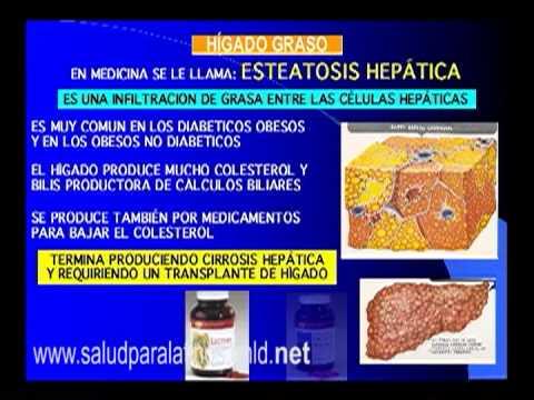 Excesso de açúcar no sangue Latina