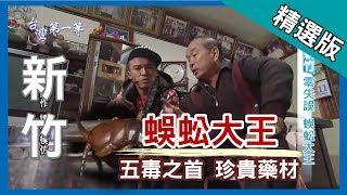 台灣第一等【達人鐵筷抓蜈蚣 最珍貴藥材】新竹 _精選版