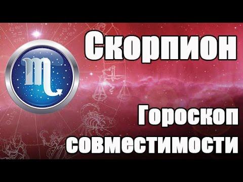 Гороскоп совместимости для Знака Зодиака: Скорпион (24 октября - 22 ноября)