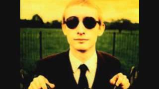 The Divine Comedy - I Was Born Yesterday