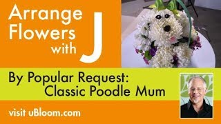 How to make a Poodle Mum Arrangement!