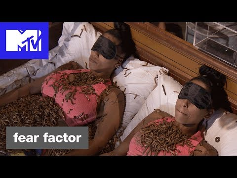 Fear Factor Season 8 Preview 'Sister vs. Bugs'