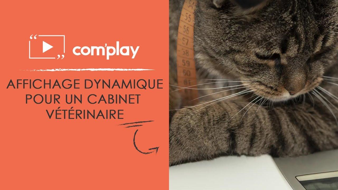 Image YouTube Affichage dynamique : exemple de diffusion pour un cabinet vétérinaire
