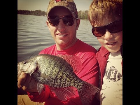 How to tell the difference between a black crappie and a white crappie