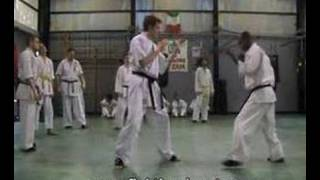 Gambar cover Shinseikai Karate Video Tecnica-Contrattacco Ushiro Mawashi
