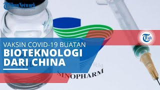 Fakta Sinovac, Efektifitas hingga Efek Samping Vaksin Covid-19 dari Perusahaan Bioteknologi China