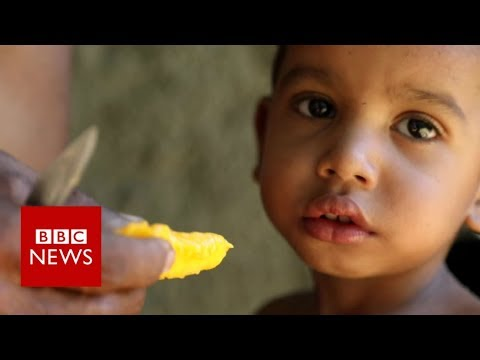 Venezuela crisis: the view from Yare  - BBC News