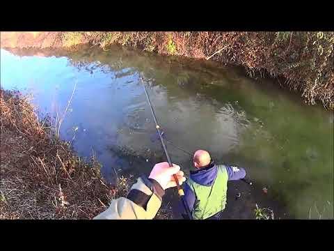 La pesca su un mangiatore in San Pietroburgo