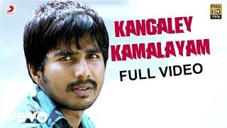 Kangaley Kamalayam  P. Unnikrishnan, Mrinalini