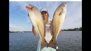 We Found REDFISH ACTION Up Shallow Inshore - Catch and Cook