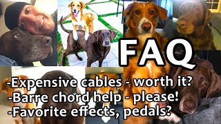Guitar FAQ13 Expensive cables compression barre chord help fav effect