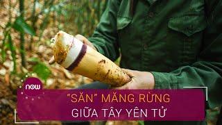 Trải nghiệm hái măng rừng giữa Tây Yên Tử | VTC Now