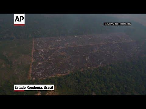 "Bolsonaro llama a Europa una ""secta ambiental"""