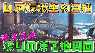 【MHWI】レア環境生物 ワダツミノツカイ&ツキノハゴロモの捕まえ方!【モンスターハンターワールド:アイスボーン】