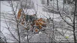 Januarski sneg v Ljutomeru