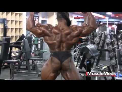 Les muscles du delta vikipediya