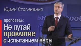 Не путай проклятие с испытанием веры  - Юрий Стогниенко, 2013