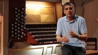 Entrevista a Francisco Ferreira