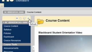 Blackboard -- Course Menu
