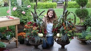 How To Create A Gorgeous Fall Planter