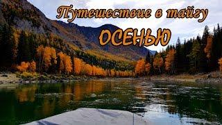Рыбалка в горном алтай