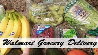 Walmart Grocery Delivery | 2 Week Grocery Haul