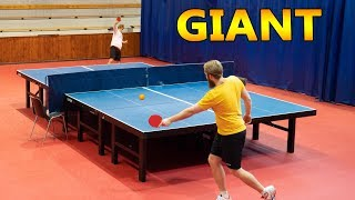 Giant Ping Pong 2