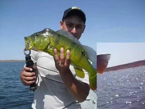 Pescaria em nova jaguaribara, castanhão-ce