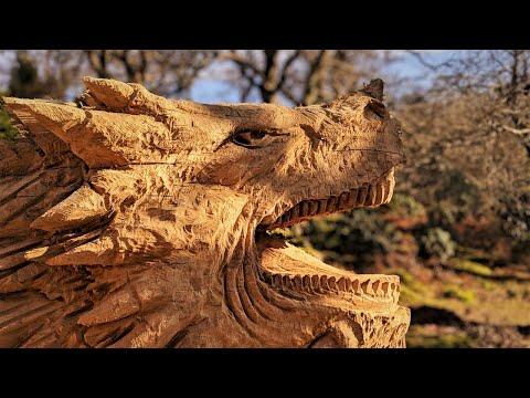 Welsh Dragon on Oak - Chainsaw Carved by Simon O'Rourke
