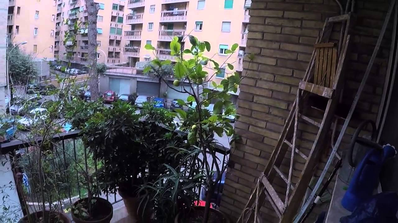 Single Bed in Rooms in a nice three bedroom apartment with a family, Ostiense district