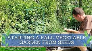 Starting a Fall Vegetable Garden in Raised Beds from Seeds (Late August Planting)
