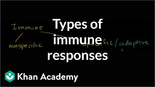 Types of immune responses: Innate and adaptive, humoral vs. cell-mediated | NCLEX-RN | Khan Academy