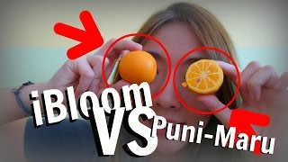 iBloom VS Puni-Maru Mini Orange Squishies | WHICH ONE SHOULD YOU BUY | Squishy Battles