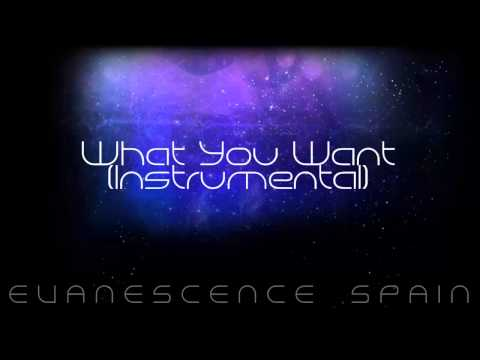 Evanescence What You Want Instrumental [HD 720p]