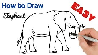 How To Draw An Elephant Easy Step By Step | Art Tutorial For Beginners