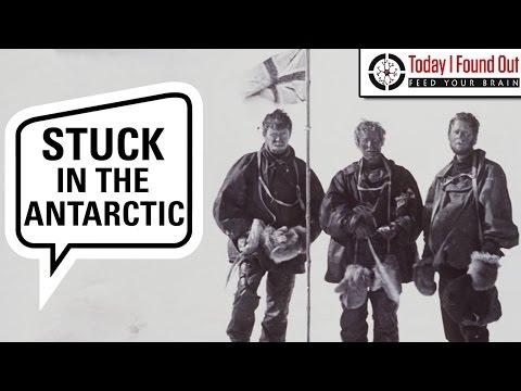 The Amazing Story of Douglas Mawson's 300 Mile Antarctic Trek