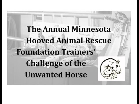 For the past ten years MHARF has held its annual Trainer's Challenge of the Unwanted Horse to provide training for horses in our program! This is our promotional video filmed in 2015.