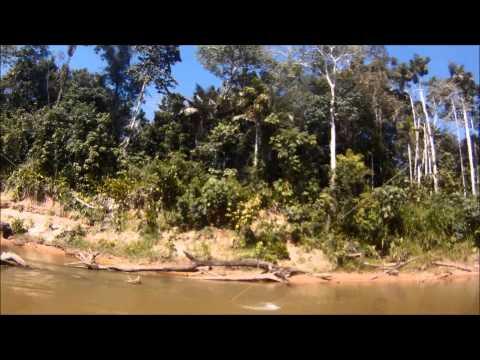 BOLIVIA AGUAS NEGRAS CAMP
