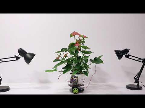 A plant-robot hybrid
